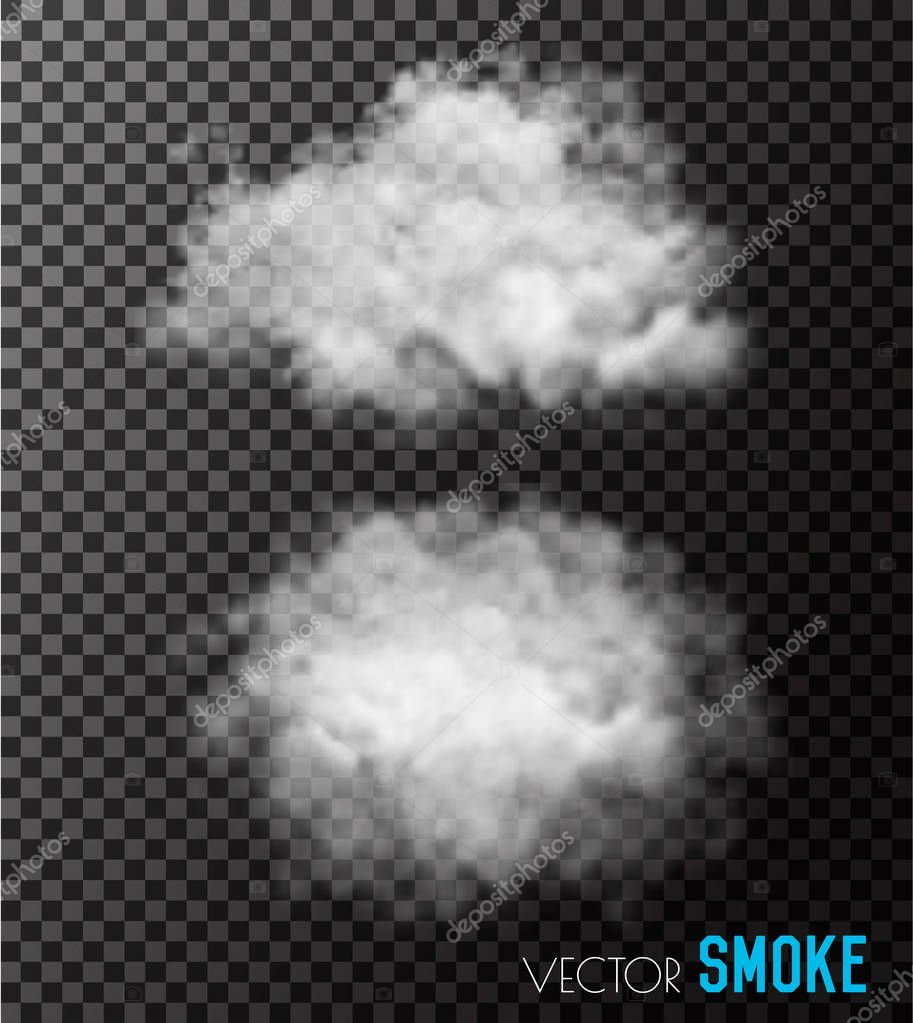Transparent set of smoke vectors.