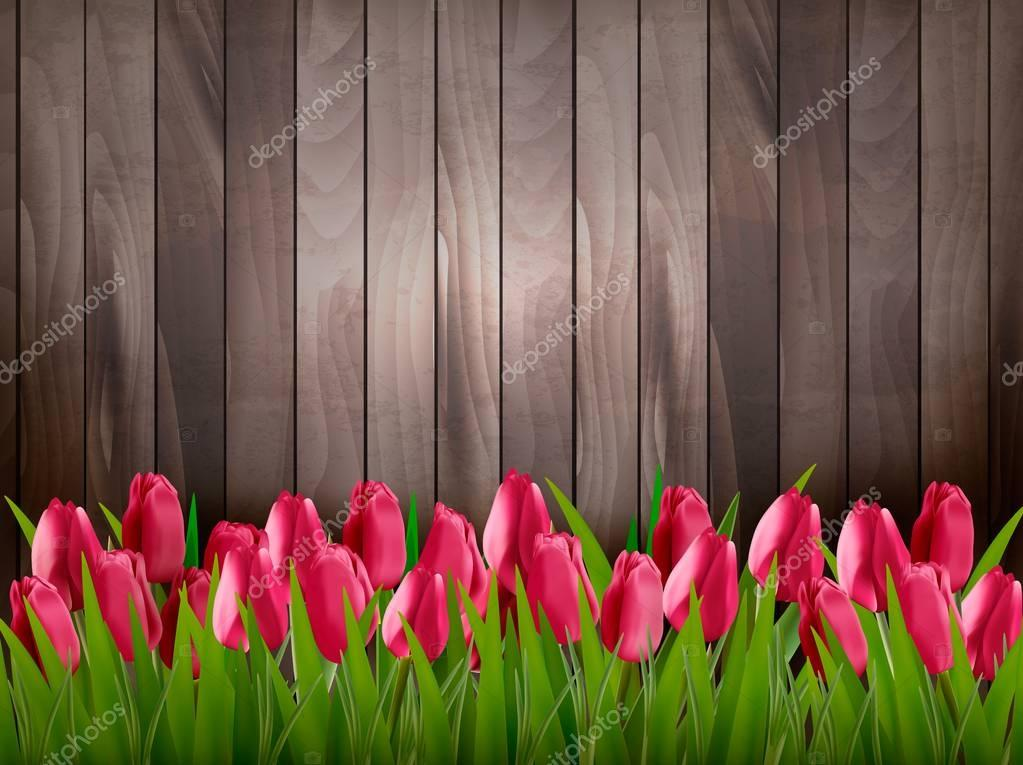 Nature spring background with red tulips on wooden sign. Vector.