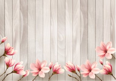 Nature spring background with beautiful magnolia branches on woo