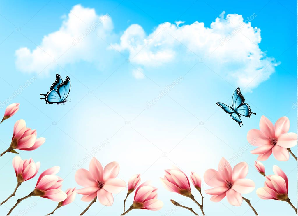 Nature spring background with beautiful magnolia branches on blu