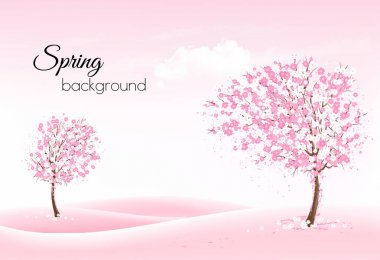 Beautiful spring nature background with a blossoming trees and l