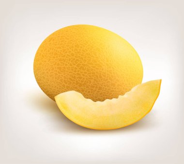 Yellow Honeydew Melon on White Background. Vector