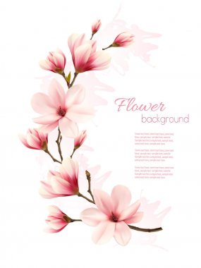 Beautiful pink magnolia background. Vector.