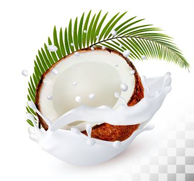 Coconut in a milk splash on a transparent background. Vector.