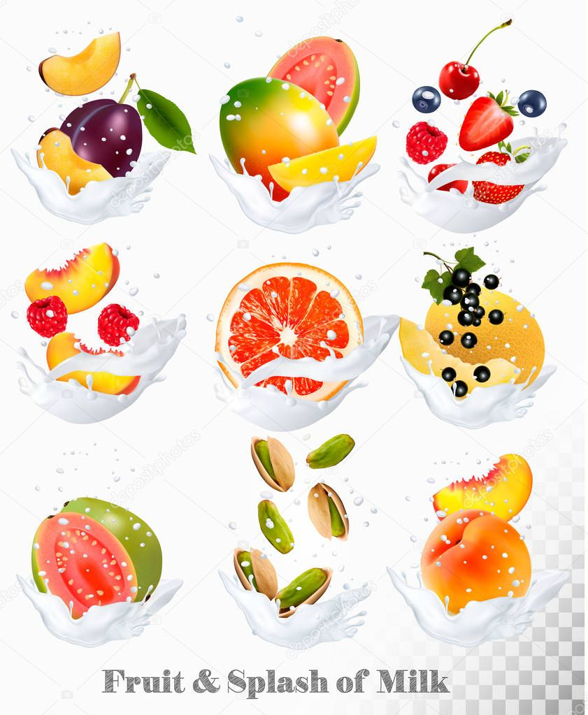 Big collection icons of fruit in a milk splash. Guava, plum, man