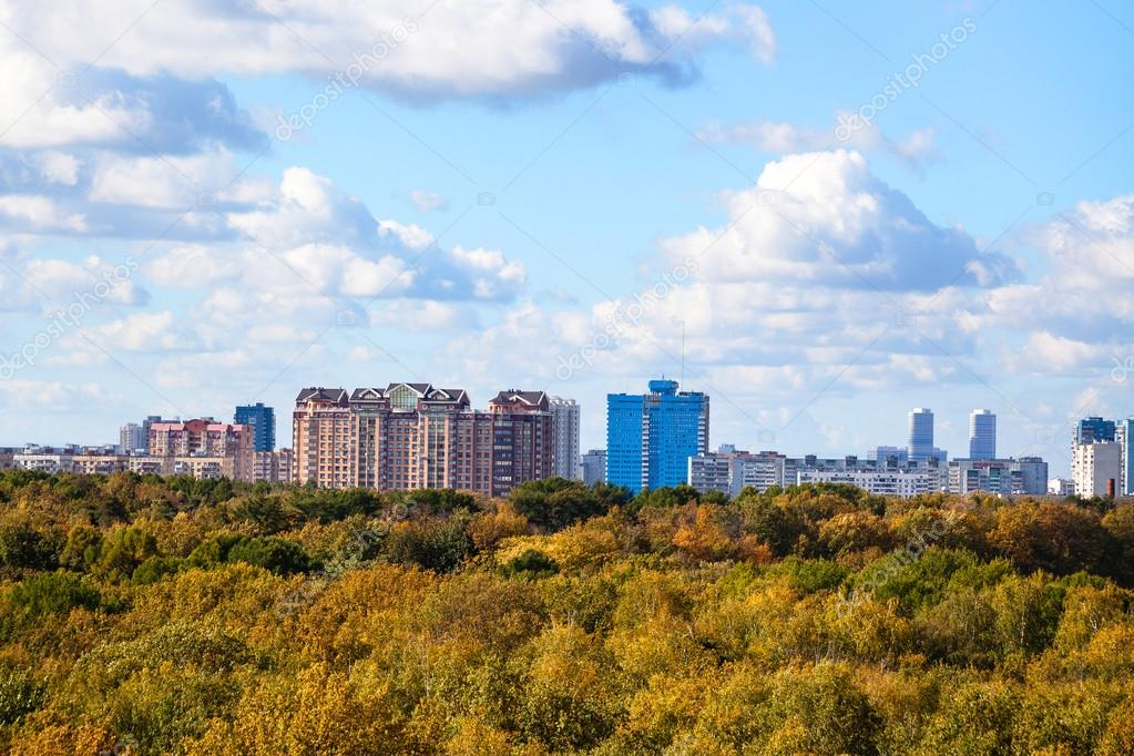 yellow and green tree tops and skyline in autumn