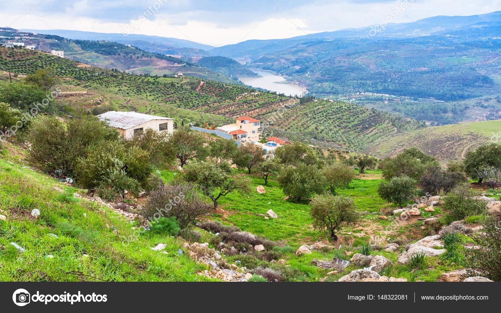 giardini terrazzati nella valle Zarga fiume in Giordania — Foto ...
