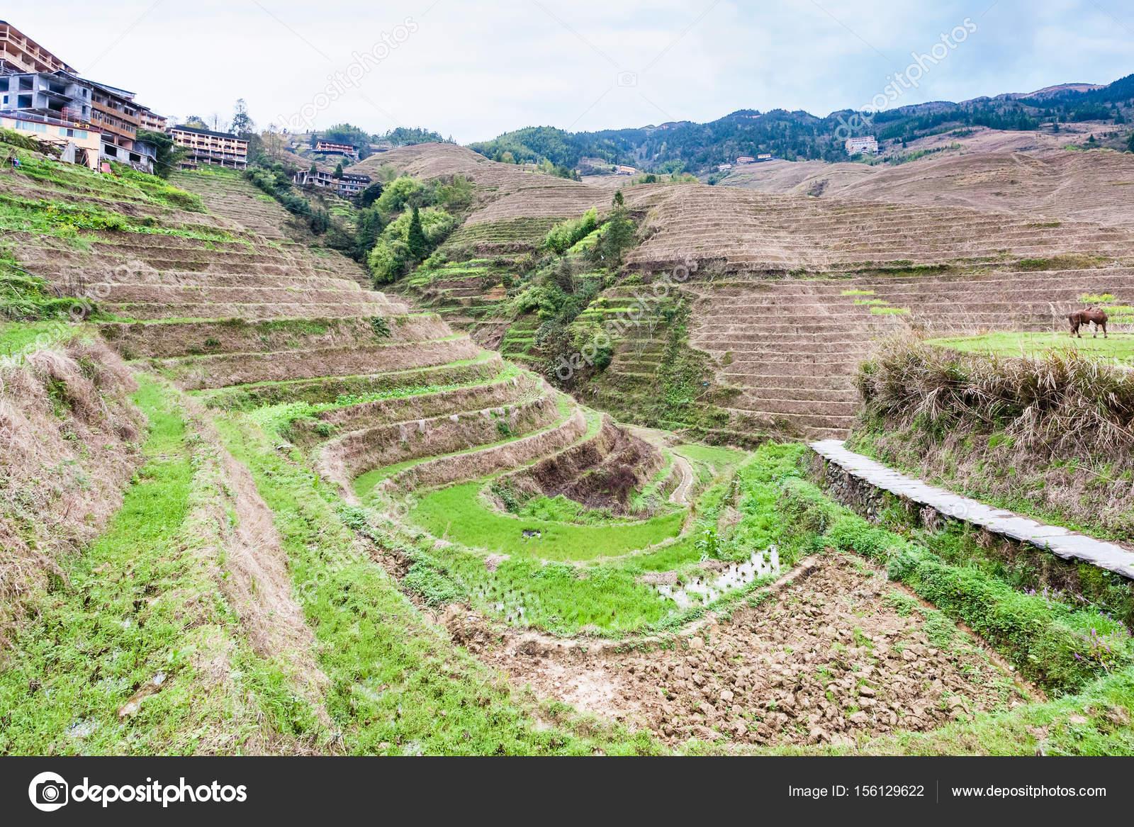 vista dei giardini terrazzati a Dazhai village — Foto Stock ...