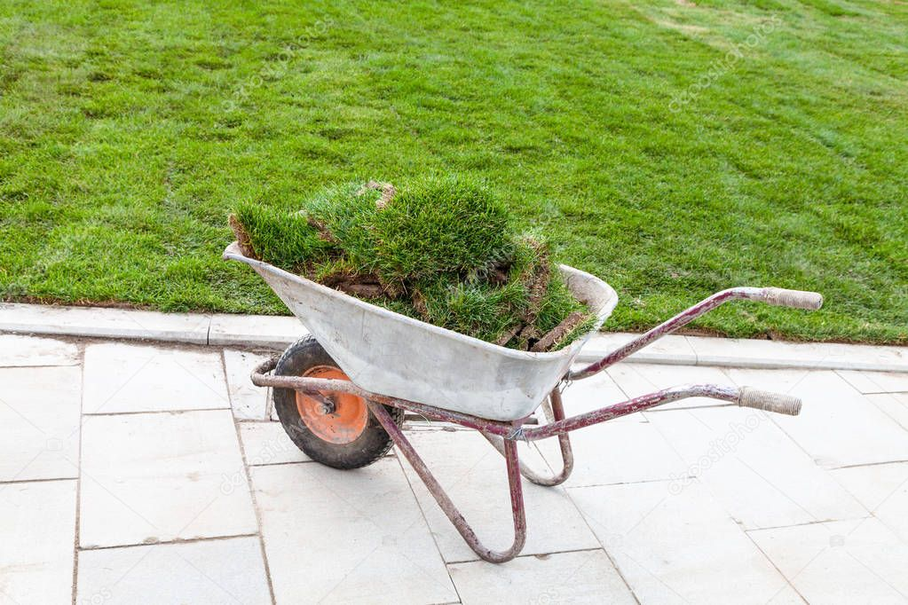 pieces of turf on a wheelbarrow near green lawn