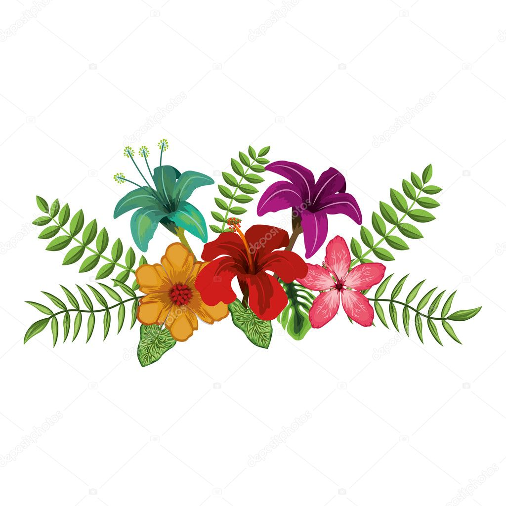 depositphotos_127912122-stock-illustration-tropical-flowers-design.jpg