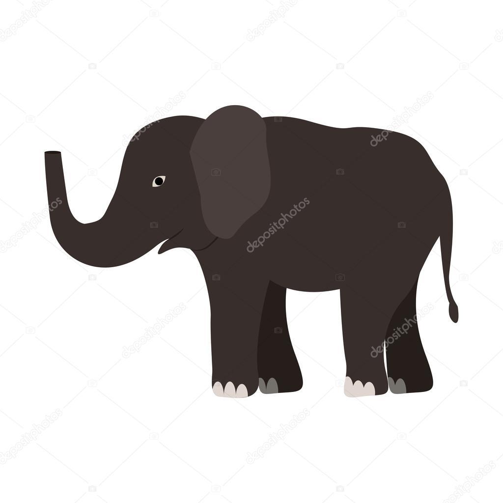 elephant wild animal
