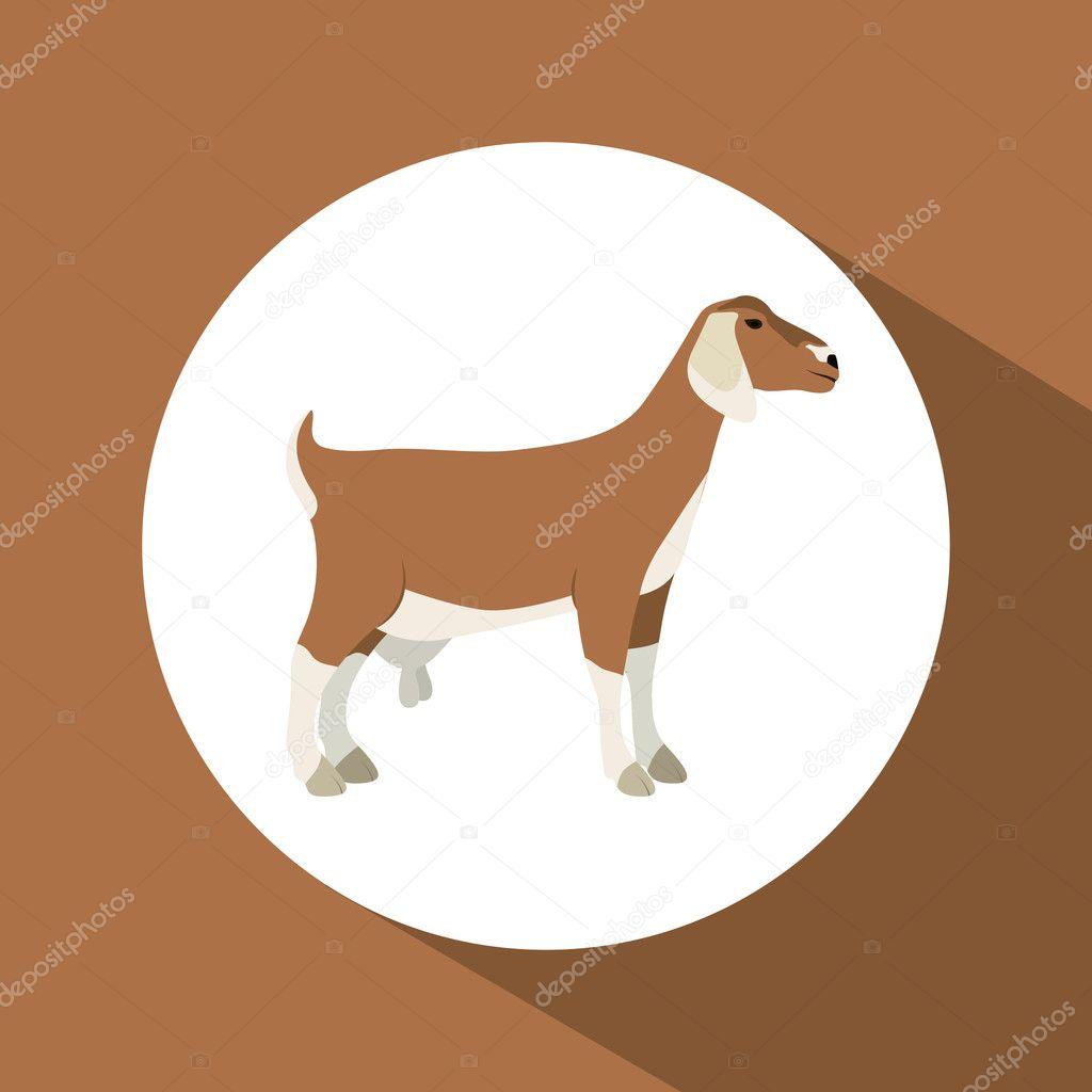 Colorful goat animal design