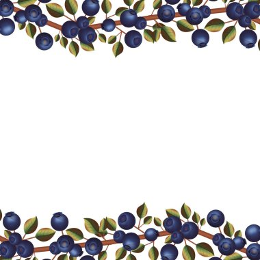 sheet contour with blueberry branch