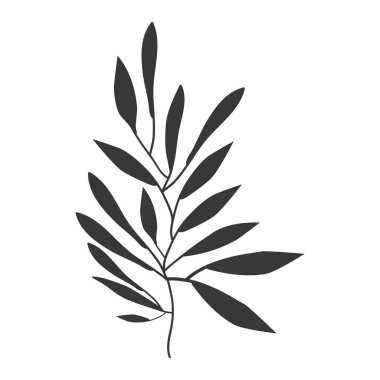 gray scale olive with more leaves