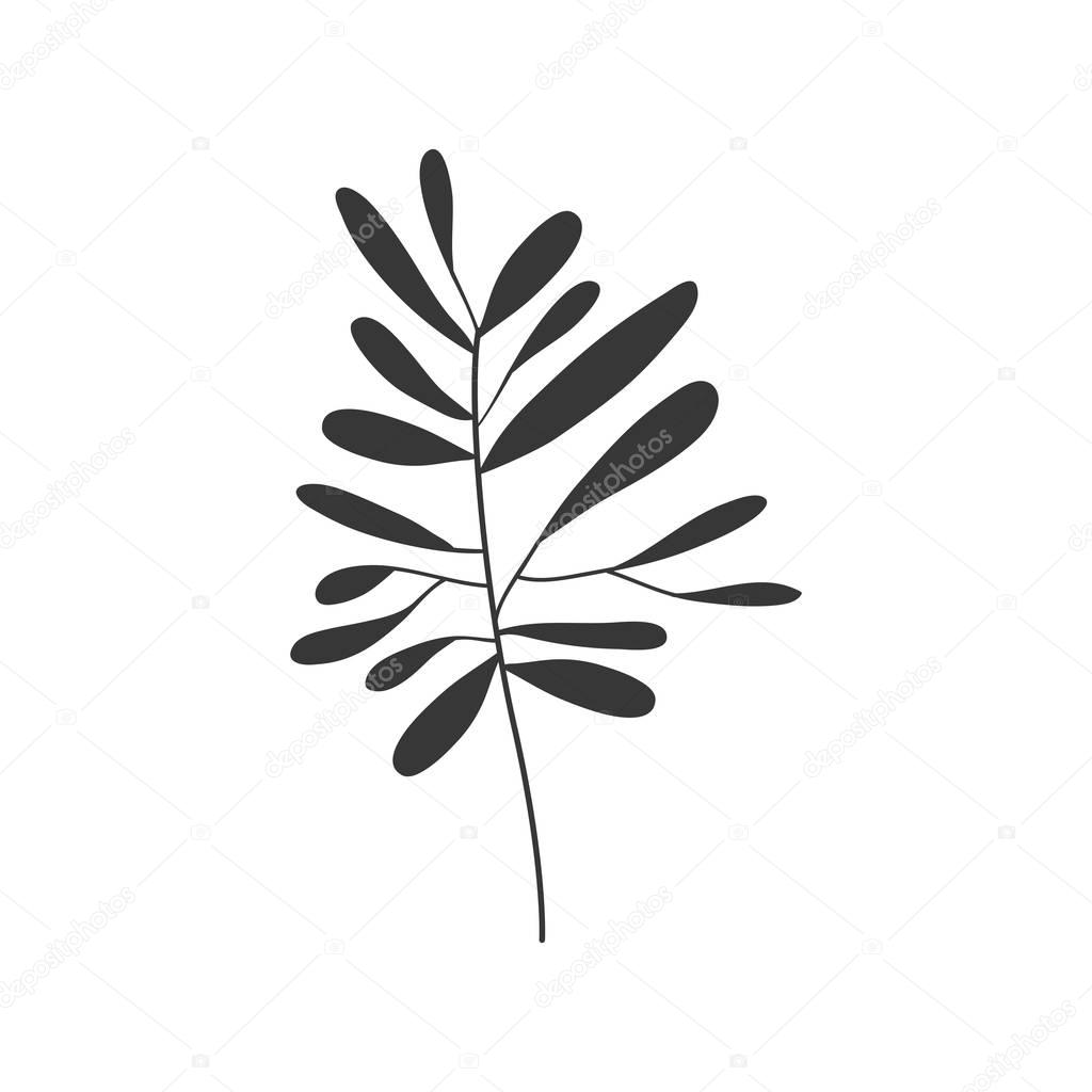 gray scale small leaves olive