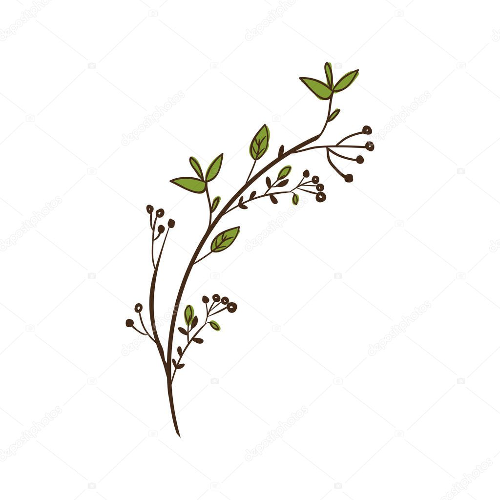 colorful decorative branch with leaves