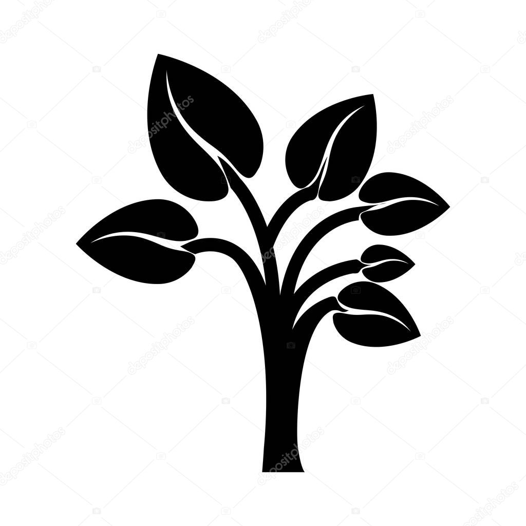 black color tree trunk with leaves shape heart to the reverse
