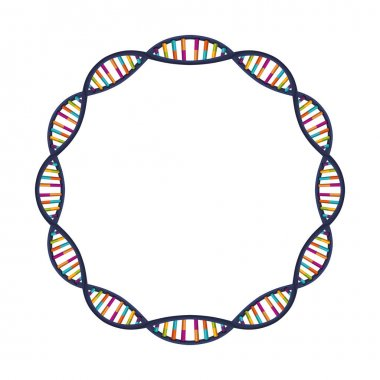 DNA strand sphere with curves