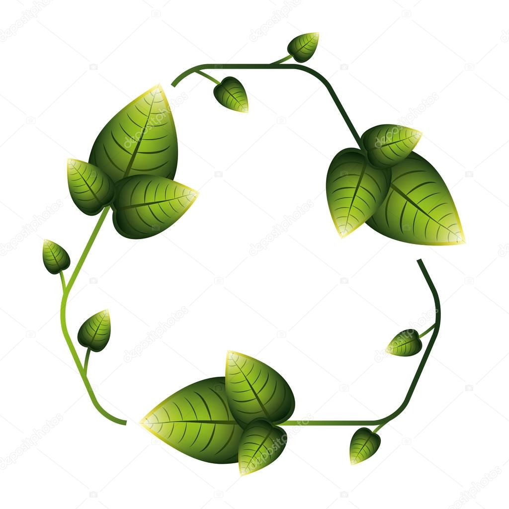 leaves in recycling symbol shape