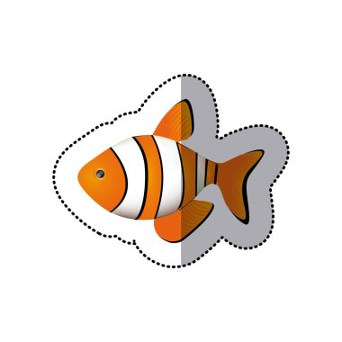 sticker colorful picture clownfish acuatic animal