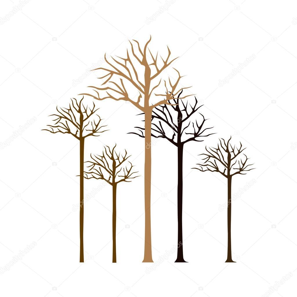 colorful bare oak trees icon