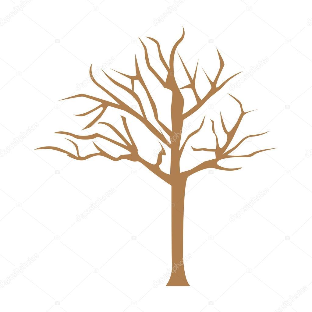 color bare oak tree icon