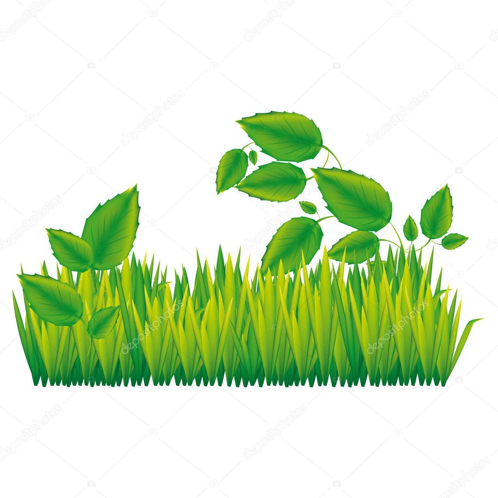 color silhouette with field grass and plants