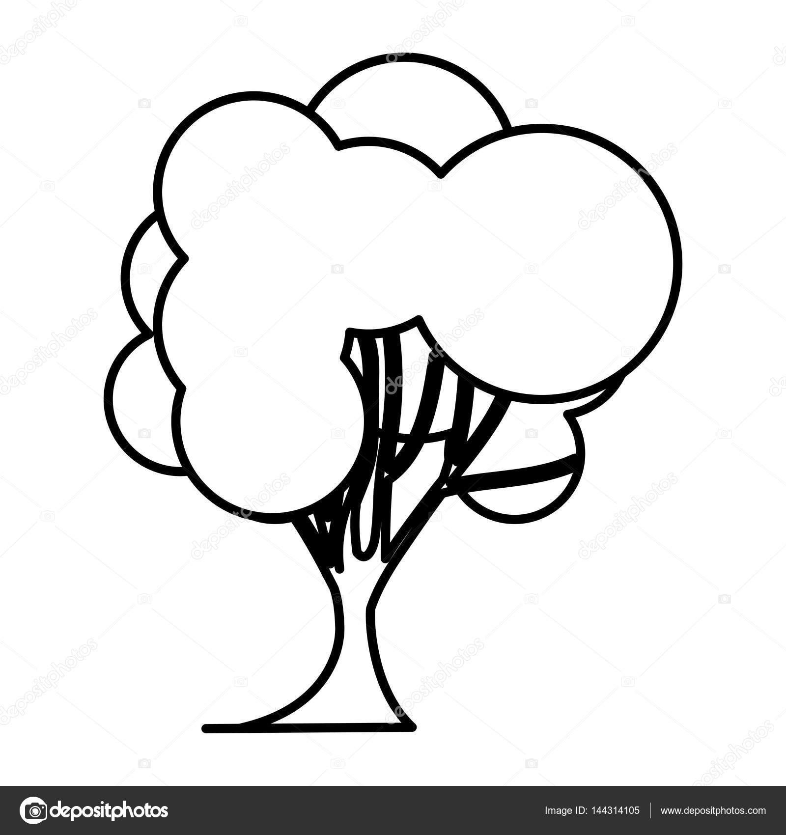 Tronco De Arbol Para Colorear Dibujo Silueta árbol