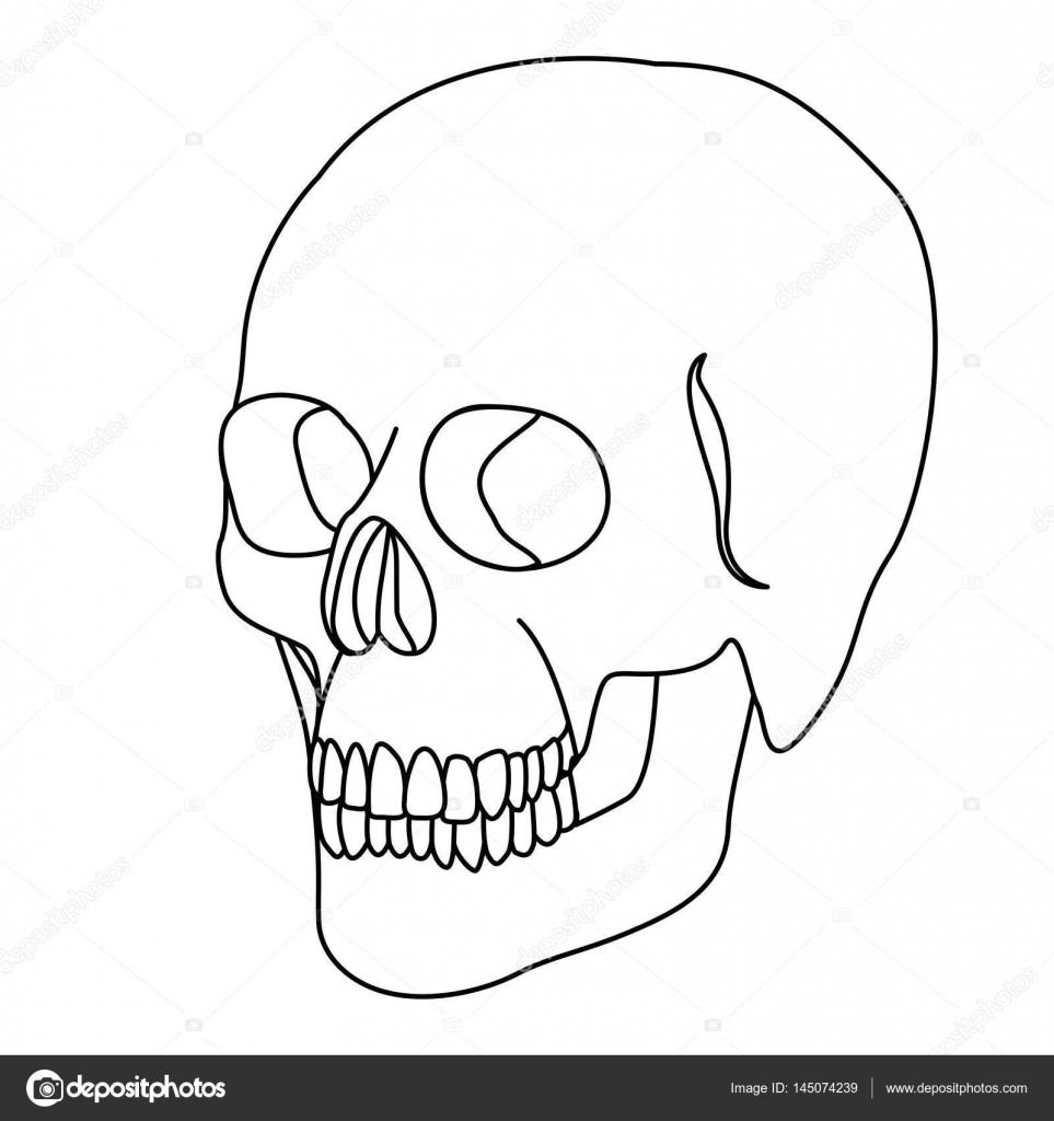 esqueleto de la silueta del icono del cráneo humano — Archivo ...