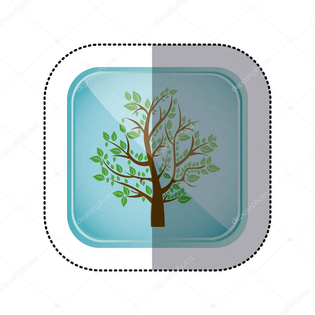sticker colorful square frame and blue background with tree with leafy branches