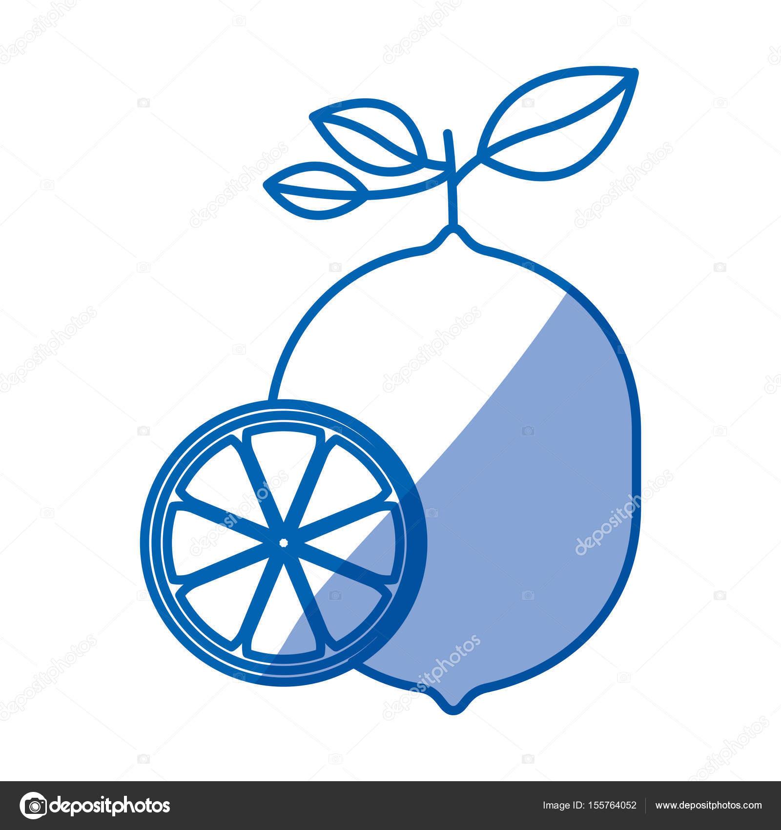 blaue Färbung Silhouette der Zitrone Obst mit Stiel und Blättern und ...
