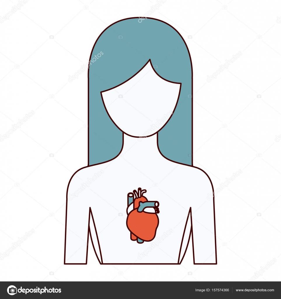 Farbe Abschnitte Silhouette halben Körper weibliche Person mit Herz ...