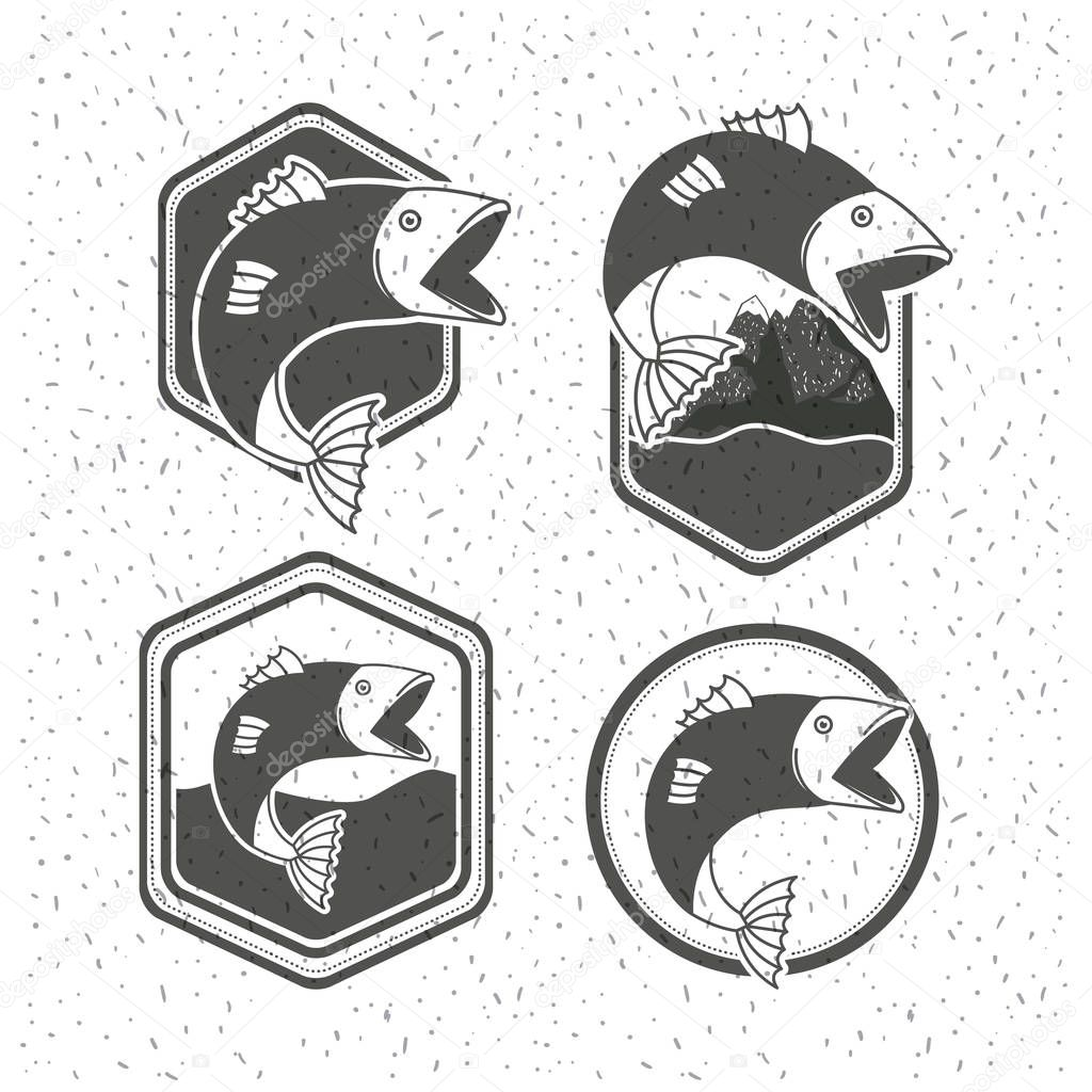 white background with sparkle of monochrome silhouette set shield emblem with types of fish