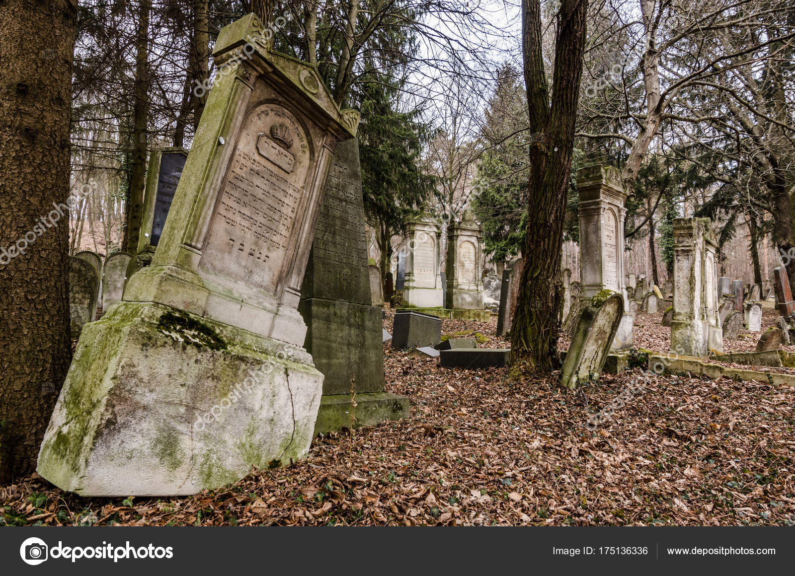 Abandoned old forest cemetery — Stock Photo © thomaseder