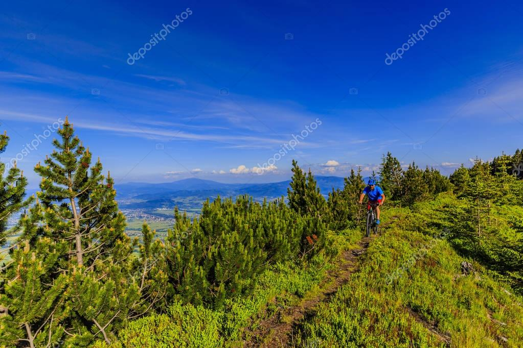Фотообои Mountain biker riding on bike in summer mountains forest landsca
