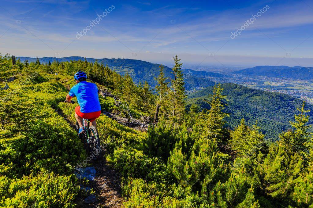 Фотообои Mountain biker riding on bike in summer mountains forest landsca