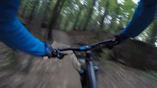 Cyklistika v podzimní krajině lesní hory. Muž Mtb enduro toku stezka cyklotrase. Venkovní sportovní aktivity