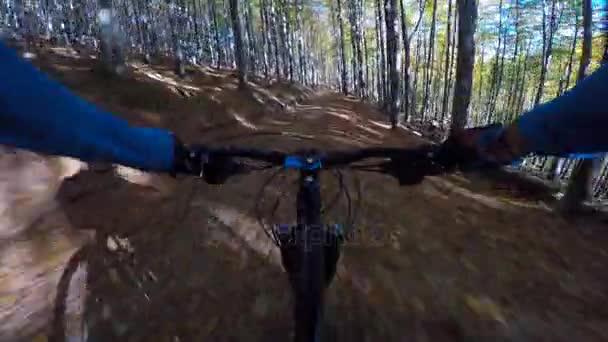 POV na horském kole, jízda na kole v podzimní krajině lesní hory. Muž Mtb toku stezka cyklotrase. Venkovní sportovní aktivity