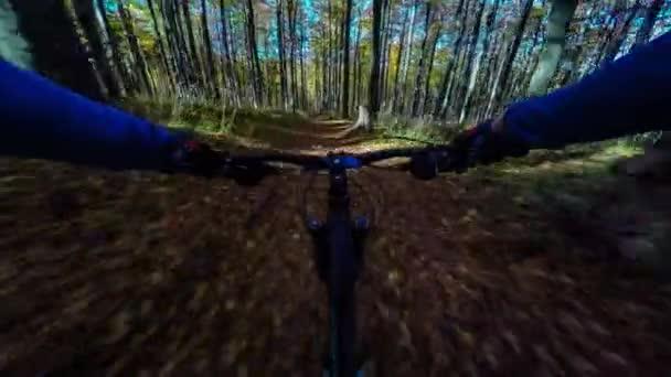 POV na horském kole, jízda na kole v podzimní krajině lesní hory. Muž cyklotrase sjezdovka. Venkovní sportovní aktivity