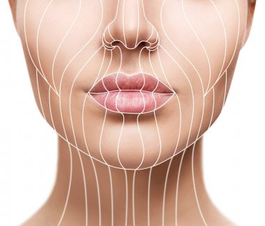 Face lift anti-aging lines on young female face. Graphic lines showing facial lifting effect on skin. stock vector