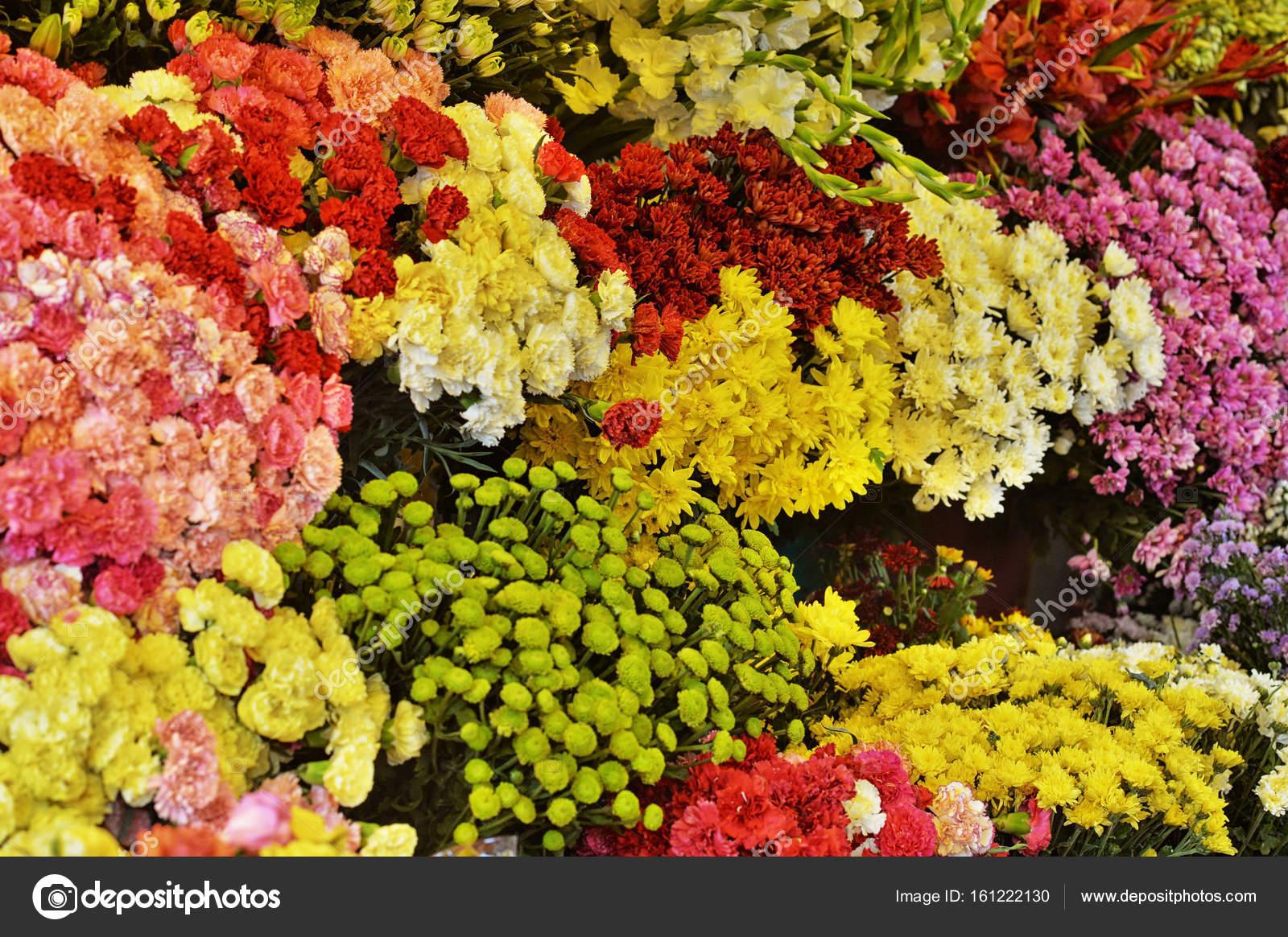 Красивые яркие картинки с цветами