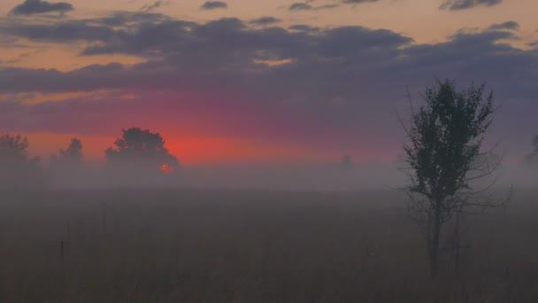 Felhős napkelte ég a nap vörös tónusok. 4k 3840 x 2160. Nélkül, madarak