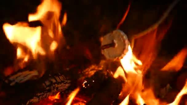 4k. Marshmallows am Lagerfeuer braten. Leben im Freien