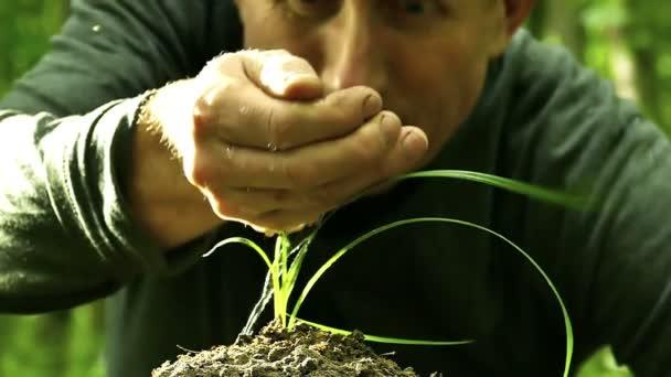 Muž pečlivě zaléval zelené trávy z jedné dlaně. Ochrana přírody symbolu