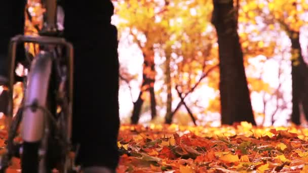 Bicycle trip in beautiful autumn park with yellow leaves