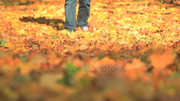 Man walk  in  autumn park with yellow trees. Foots move to camera.