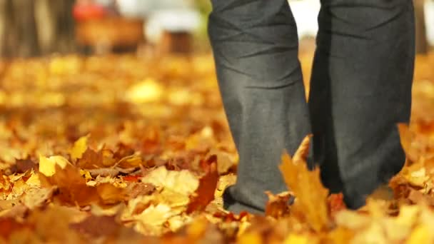 Slow notion .Man walk  in  autumn park with yellow trees. Foots move from camera.