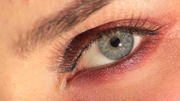 Ženské oko s kosmetické řasy a obočí. Studio makra snímku