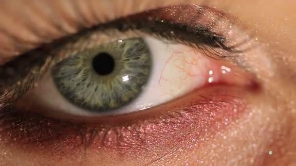 One female eye  with  cosmetic mascara, large pupil, red capillares. Macro