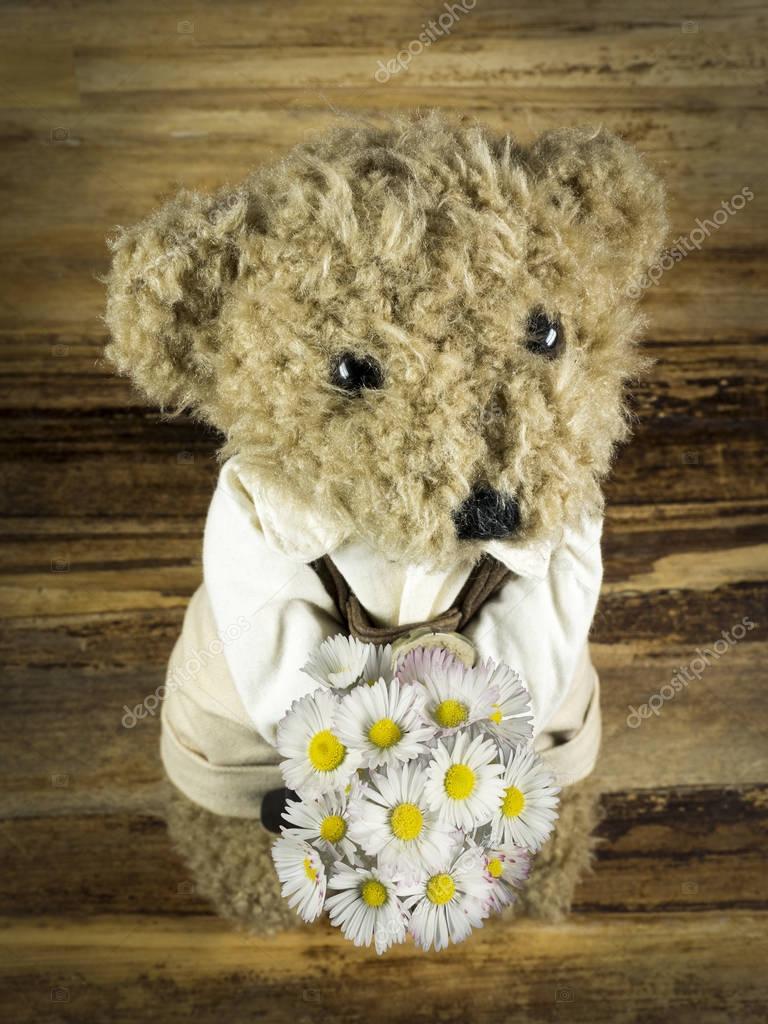Teddy presented flowers